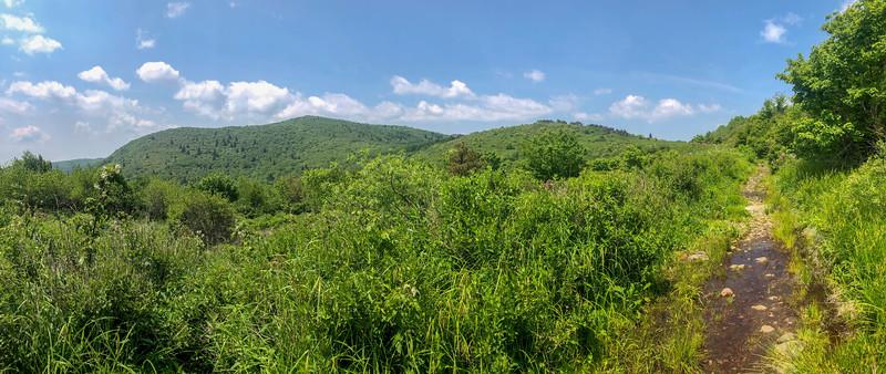 Graveyard Ridge Trail -- 5,660'