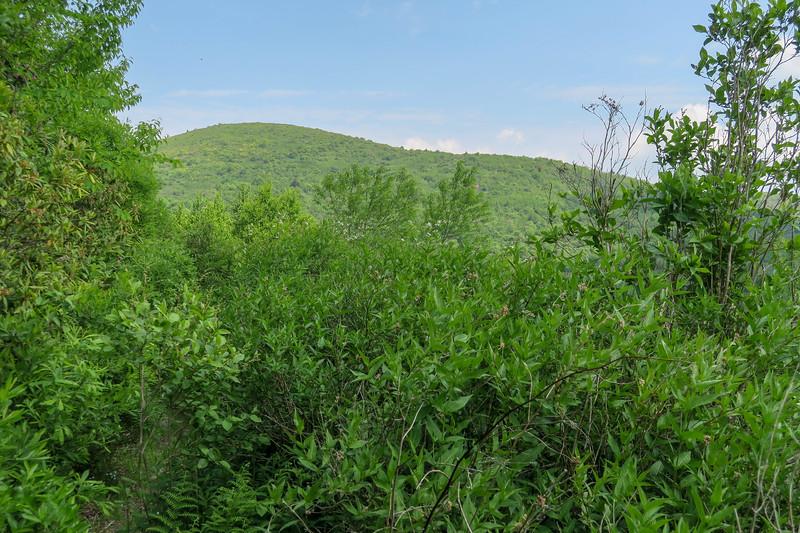 Graveyard Ridge Trail -- 5,510'