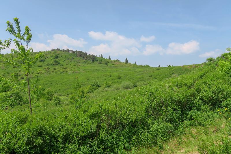 Graveyard Ridge Trail -- 5,680'