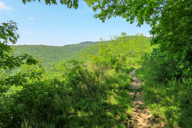 Graveyard Ridge Trail -- 5,300'