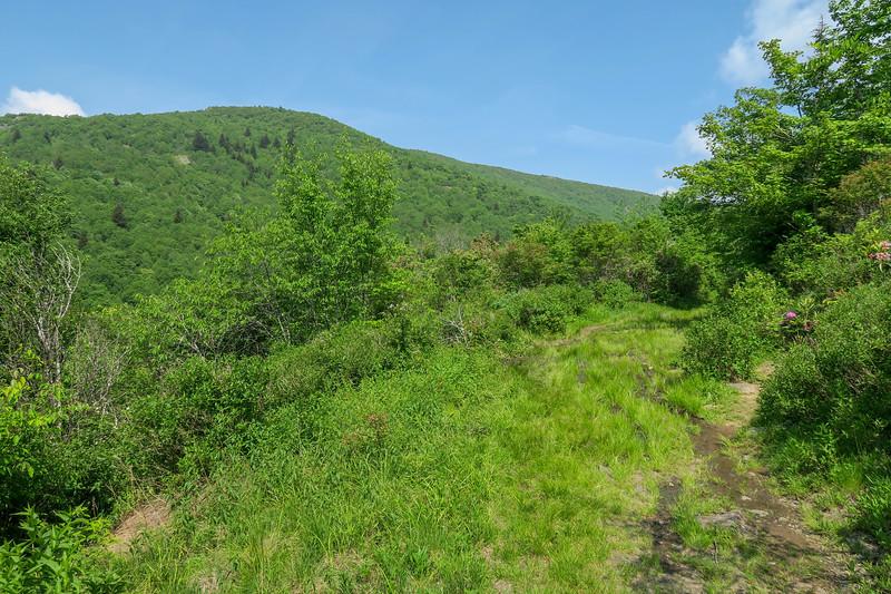Graveyard Ridge Trail -- 5,350'