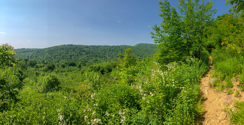 Graveyard Ridge Trail -- 5,250'