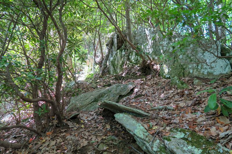 Green Mountain Trail -- 4,850'