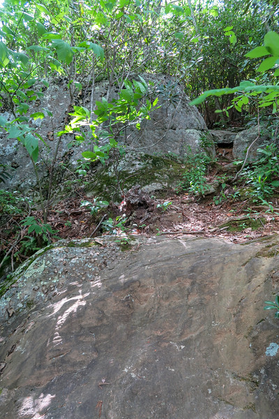 Green Mountain Trail -- 4,230'