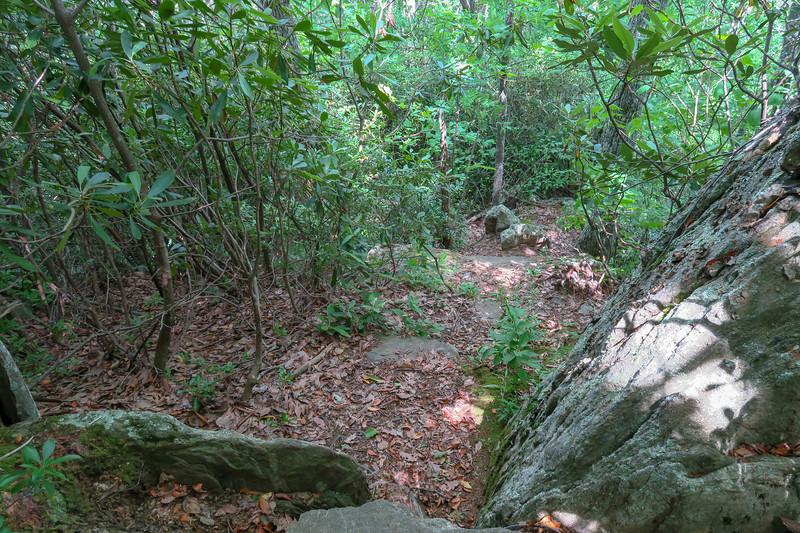 Green Mountain Trail -- 4,250'