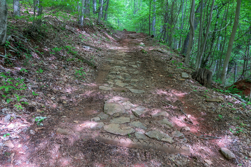 Green's Lick Trail -- 3,180'