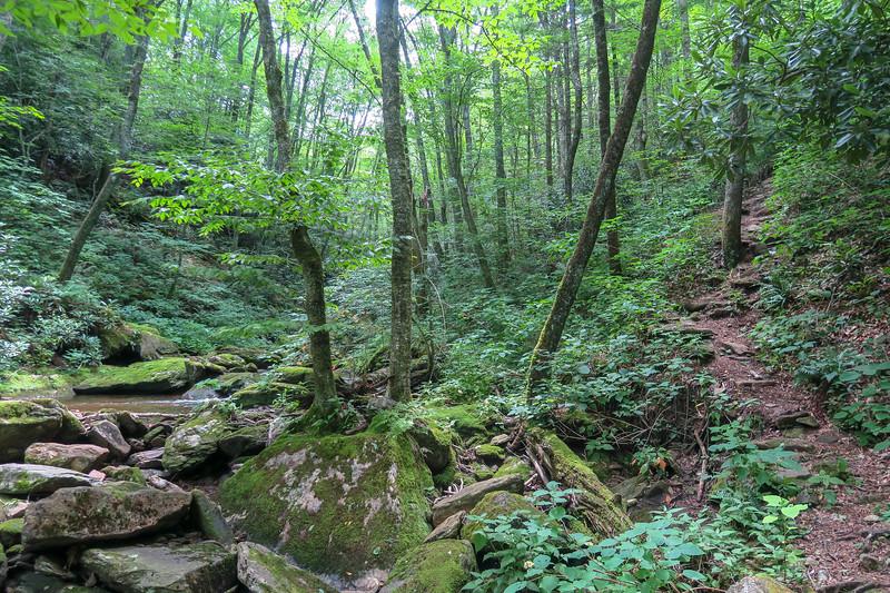 Haywood Gap Trail -- 4,510'