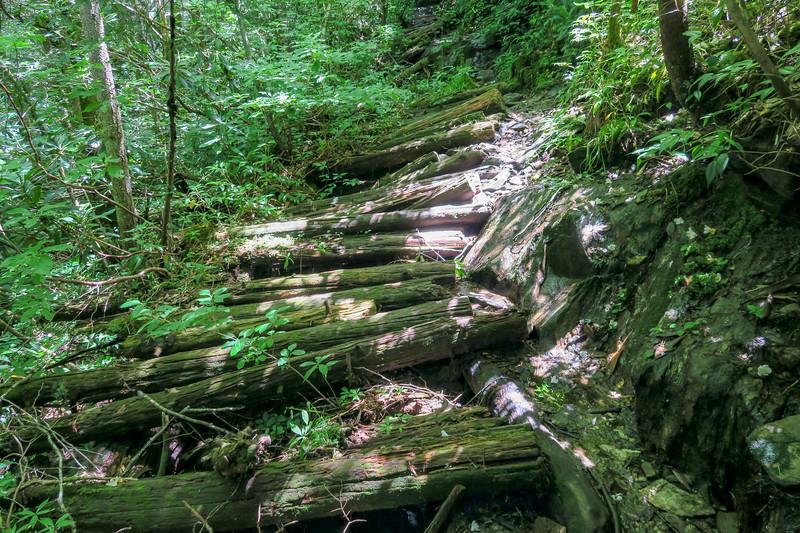 Haywood Gap Trail -- 4,750'