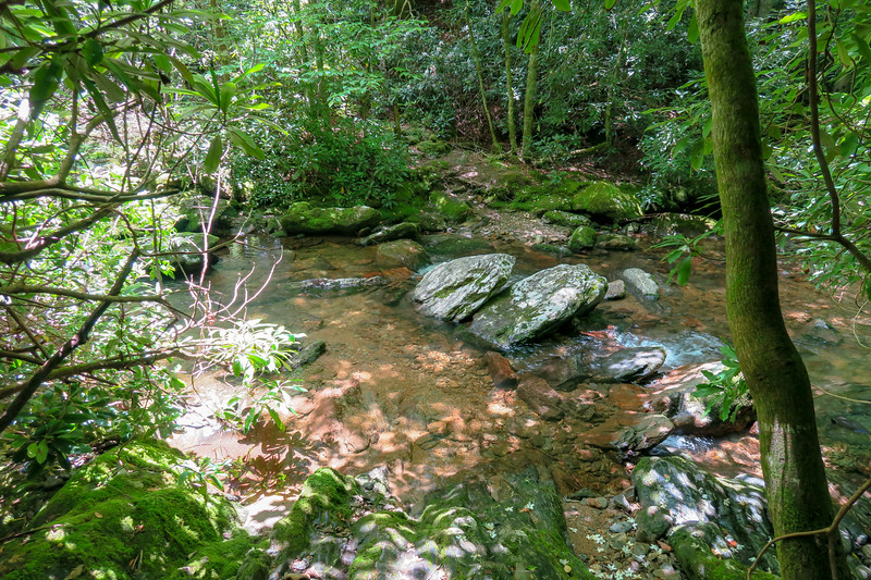 Haywood Gap Trail @ Middle Prong West Fork Pigeon River -- 4,300'