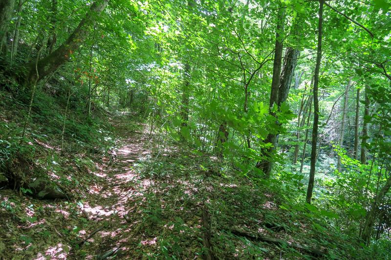Haywood Gap Trail -- 4,220'