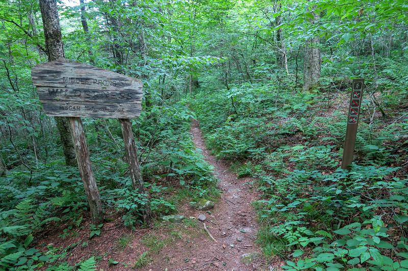 Haywood Gap Trail -- 5,120'