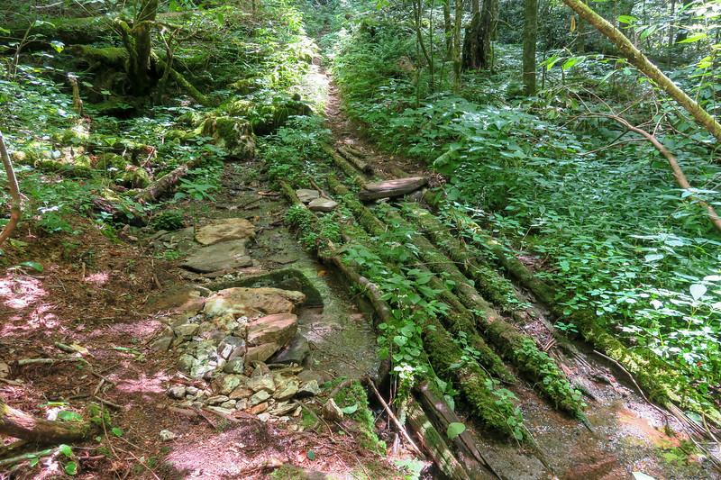 Haywood Gap Trail -- 5,060'