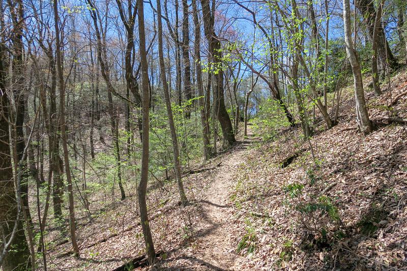 Horse Cove Gap Trail -- 3,380'