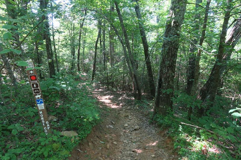 Horse Cove Gap Trail @ F.R. 5018 -- 3,780'