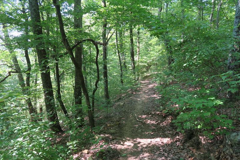 Horse Cove Gap Trail -- 3,680'