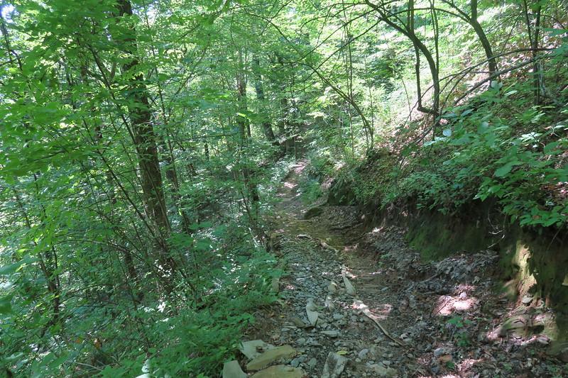 Horse Cove Gap Trail -- 3,500'