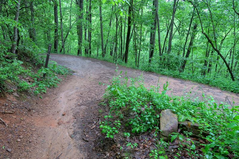 Ingles Field Gap Trail @ F.R. 479E -- 2,420'