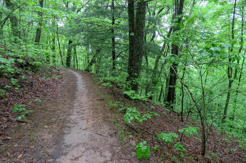 Ingles Field Gap Trail -- 2,800'