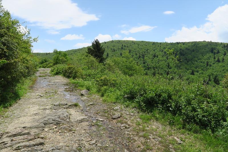 Ivestor Gap Trail -- 5,730'