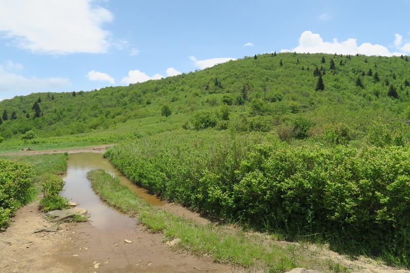 Ivestor Gap Trail -- 5,720'