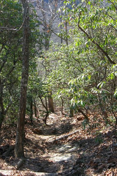 John Rock Trail -- 3,220'