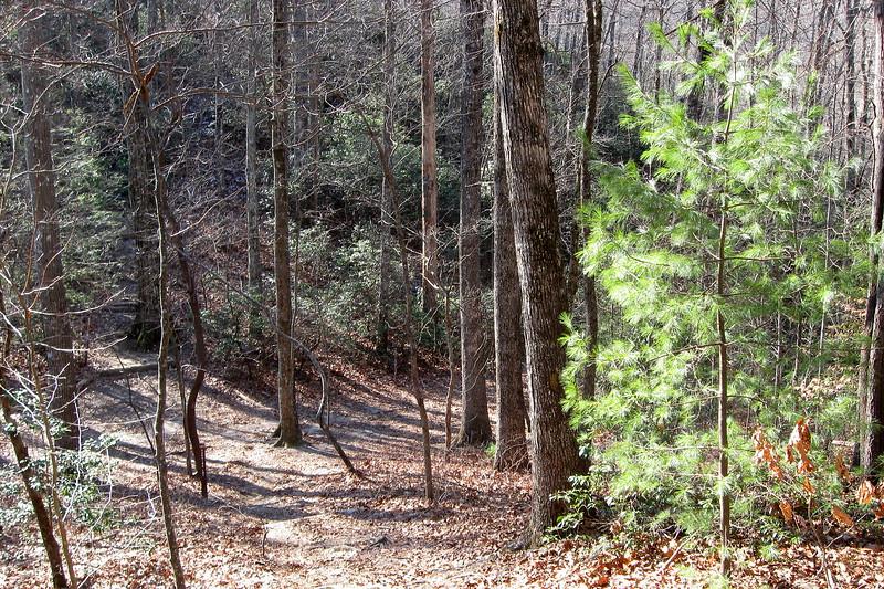 John Rock Trail -- 3,120'
