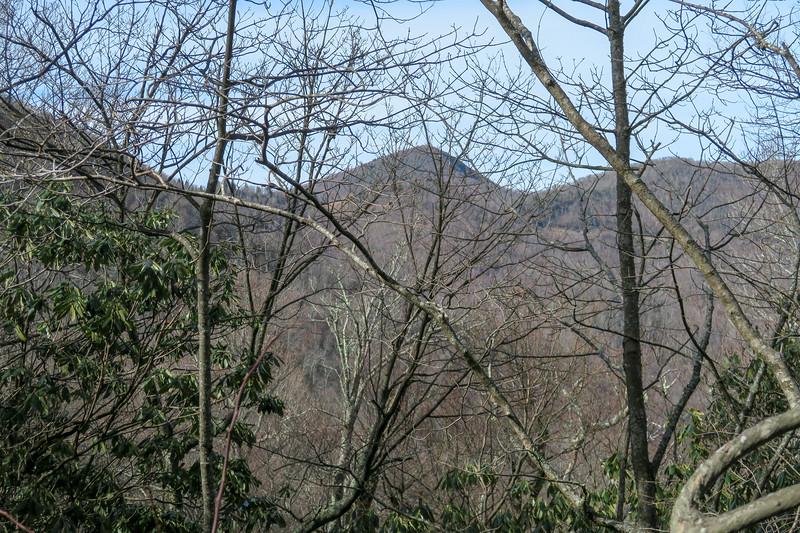 Laurel Mountain Connector Trail -- 4,700'