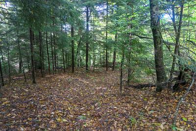 Little East Fork Trail -- 5,260'