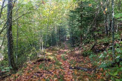 Little East Fork Trail -- 5,340'