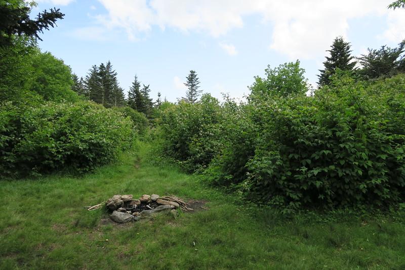 Little Sam Trail -- 5,750'