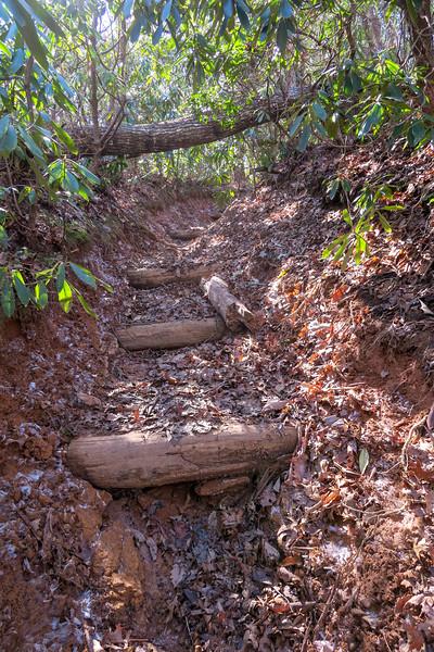 Long Branch Trail -- 2,940'