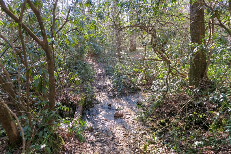 Long Branch Trail -- 2,980'