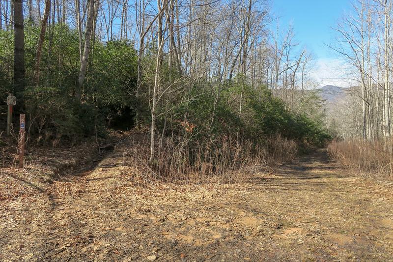 Long Branch Trail @ F.R. 5095 -- 2,860'