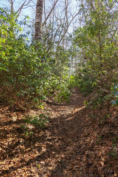 Long Branch Trail -- 2,900'