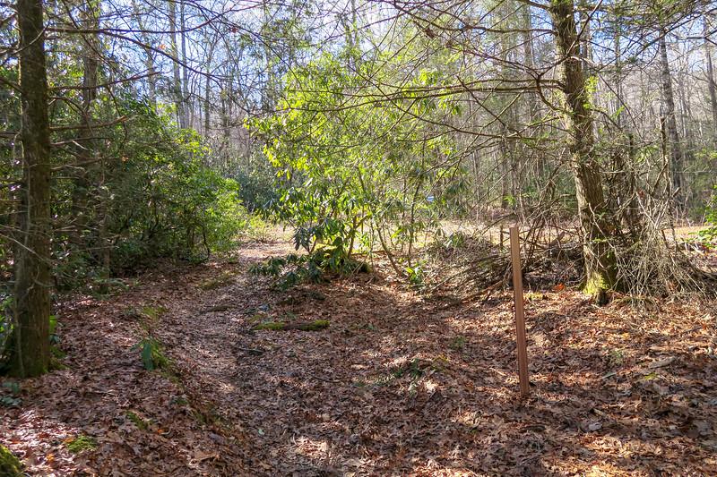 Long Branch Trail -- 3,050'