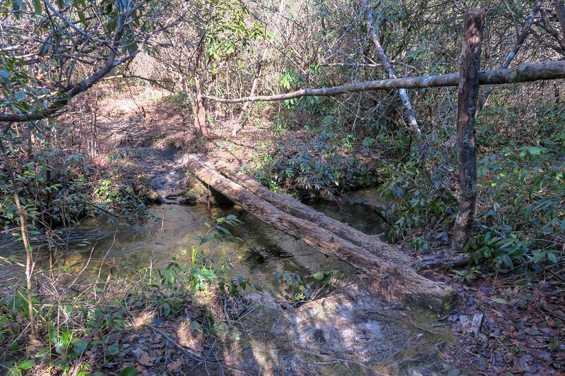 Long Branch Trail @ Long Branch -- 2,950'