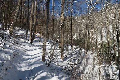 Looking Glass Rock Trail -- 2,450'