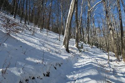 Looking Glass Rock Trail -- 2,620'