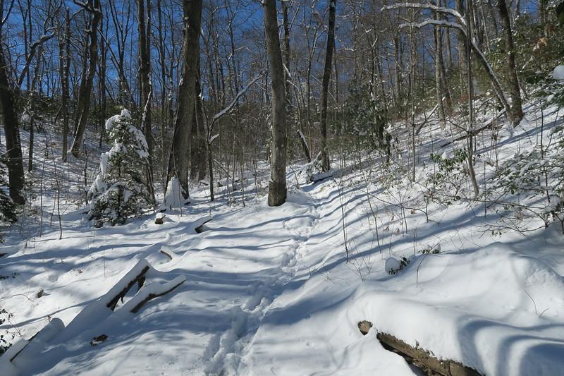 Looking Glass Rock Trail -- 3,300'