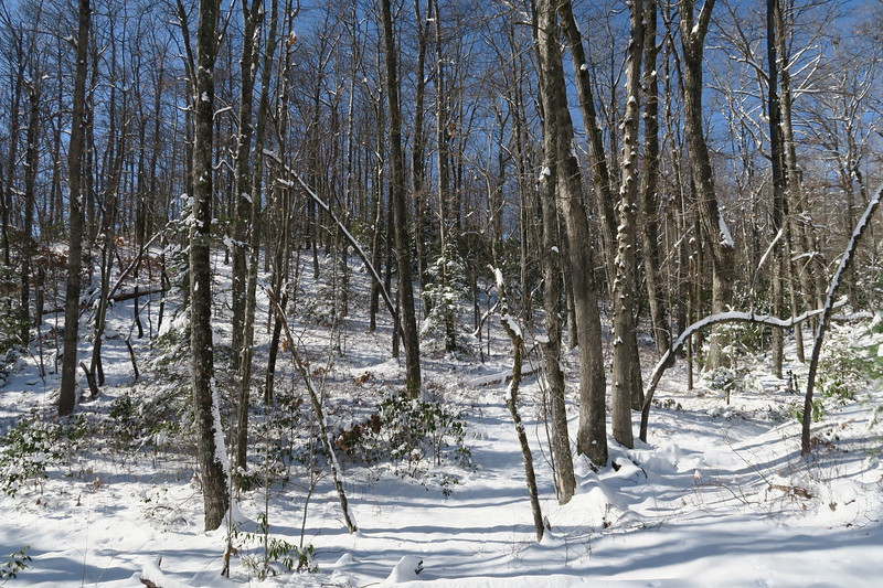 Looking Glass Rock Trail -- 3,220'