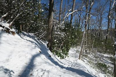 Looking Glass Rock Trail -- 2,820'
