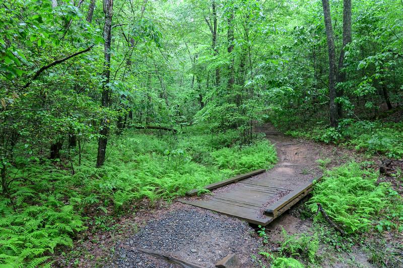 Lower Sidehill Trail