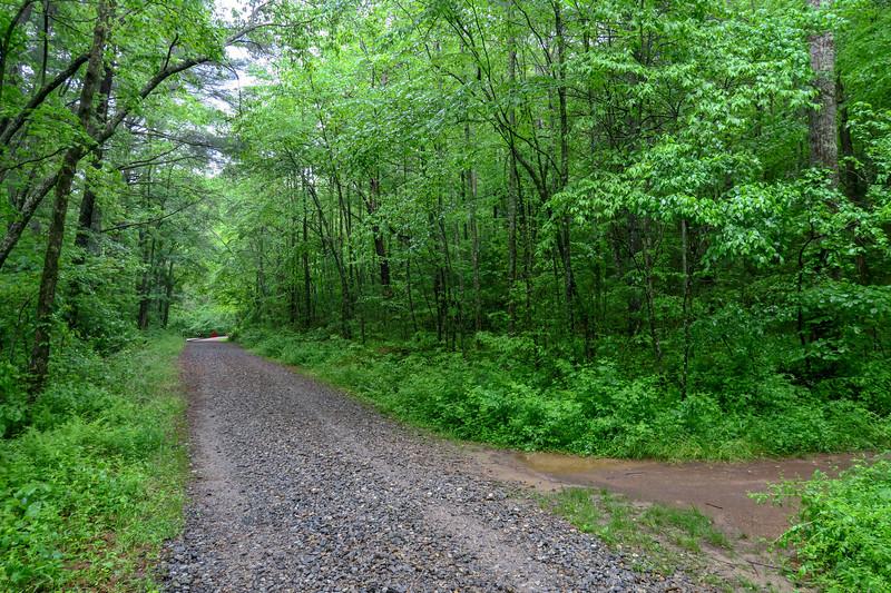 Lower Sidehill Trail @ F.R. 479F
