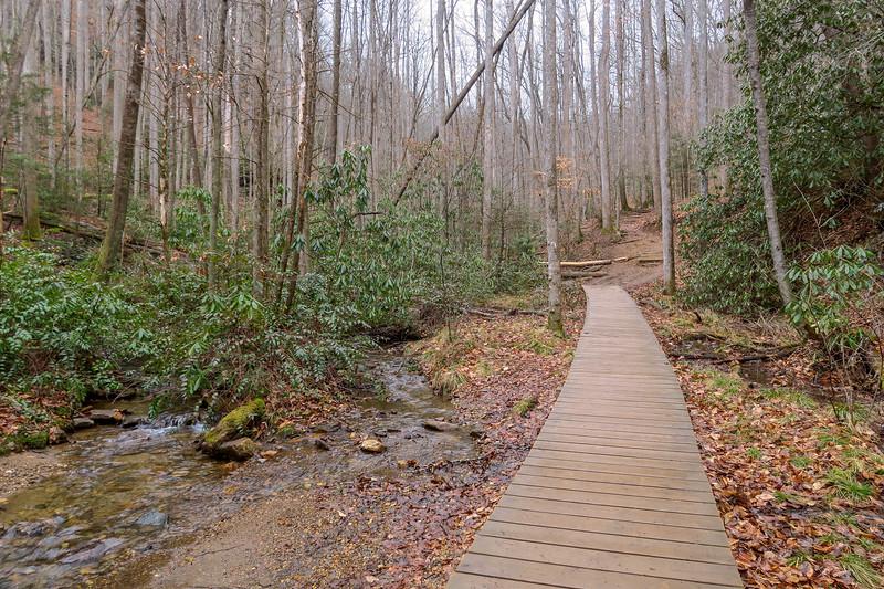 Moore Cove Trail -- 2,520'