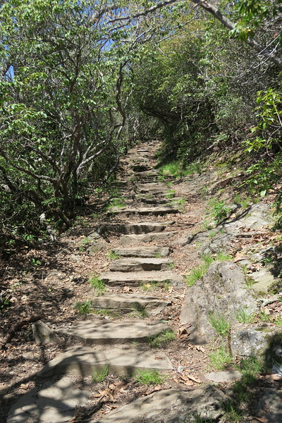 Mount Pisgah Trail -- 5,350'