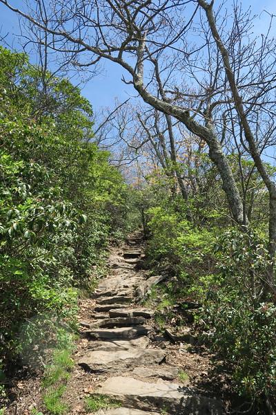 Mount Pisgah Trail -- 5,520'