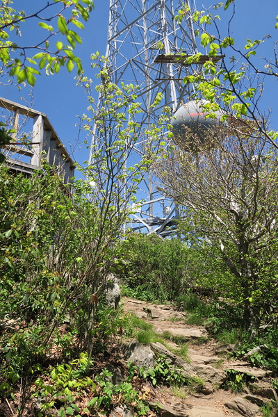 Mount Pisgah Trail -- 5,700'