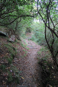 Mountains-to-Sea Access Trail