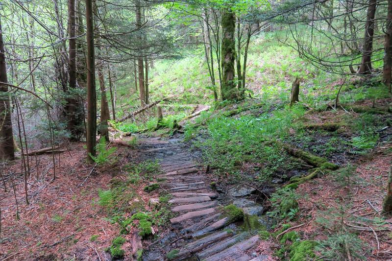 Mountains-to-Sea Trail -- 5,660'