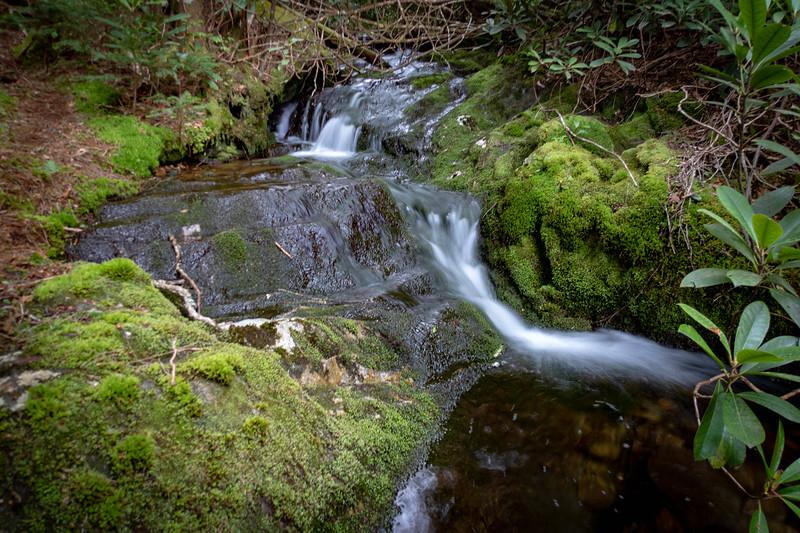 Buckeye Creek -- 5,490'
